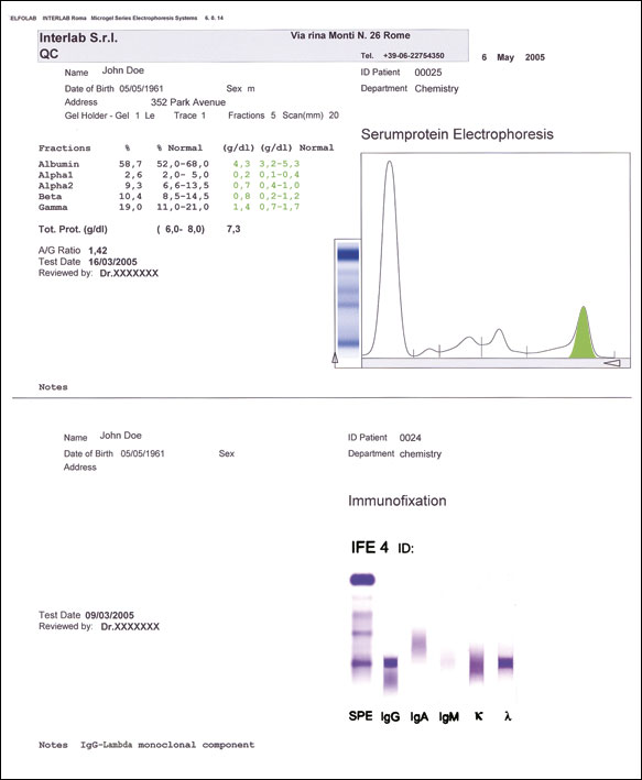 report-IFE-violetstampa-border
