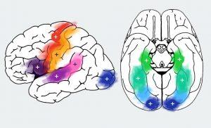 نقشه برداری مغزی زمان حقیقی